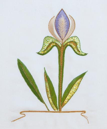 Elizabeth's Iris