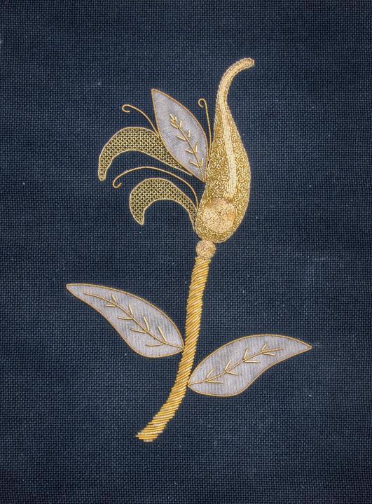 Golden Seed Pod